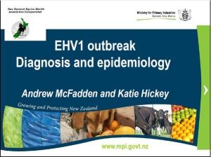 EHV1 Presentation Image